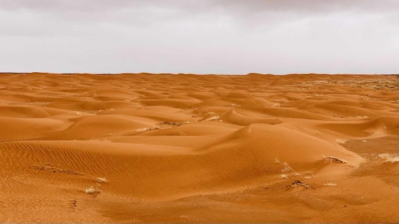 sand-dunes-along-drive-to-horseshoe-canyon.jpeg